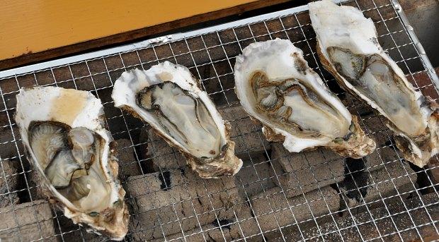 かき小屋八景島の焼き牡蠣美味しい炭火焼きミルキー鉄男の店に行ってきた!