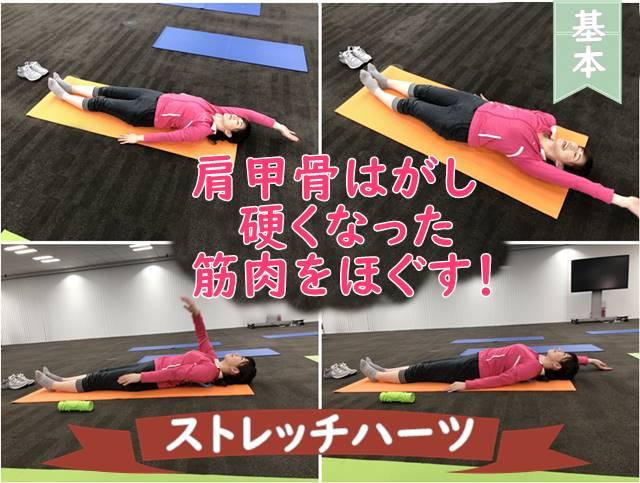 ストレッチハーツ基本の体操